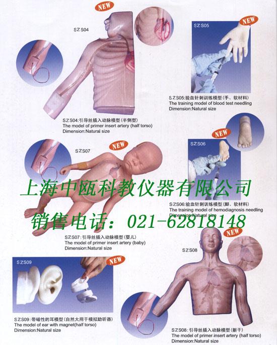 临床外科医学模型