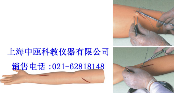 LV1型 高级外科缝合手臂模型