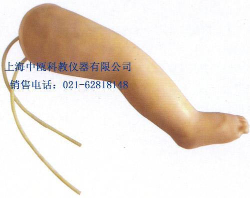 HS34型 高级婴儿腿部静脉穿刺模型