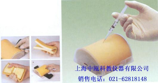 HS18E型 多功能肌肉注射模块